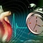 Innere Uhren: Das Richtige zum richtigen Zeitpunkt tun
