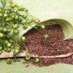Pflanzliche Hormone gegen Bauchspeicheldrüsenkrebs