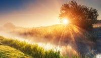 Morgensonne erleichtert die Gewichtsabnahme