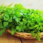 Pflanzenstoffe gegen Krebs: Die Wunderkräfte von Petersilie und Co