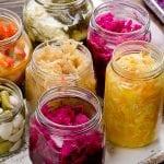 Probiotika auch gegen Osteoporose